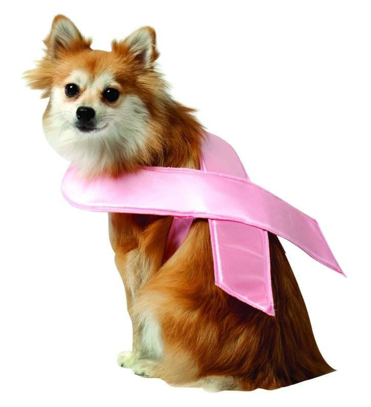 Breast Cancer Awareness Pink Ribbon Pet Dog Costume Large