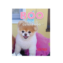 "Load image into Gallery viewer, Itty Bitty Boo 5"" Plush: Birthday Tutu"