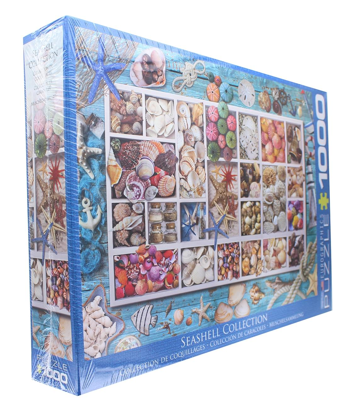 Seashell Collection 1000 Piece Jigsaw Puzzle