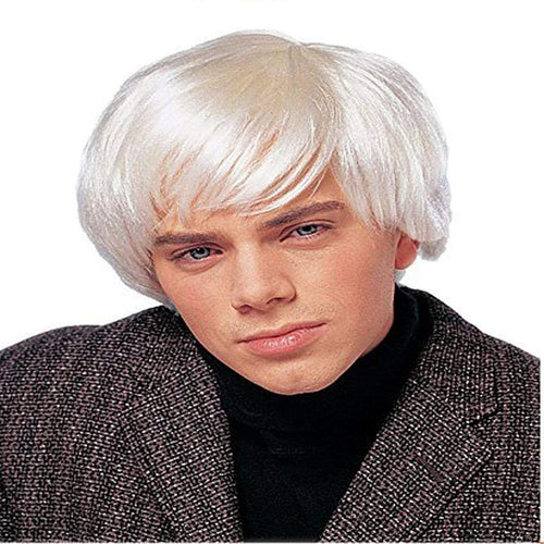 Artist Men's Costume Wig - Platinum