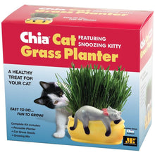 Load image into Gallery viewer, Chia Pet Grass Planter: Snoozy Cat