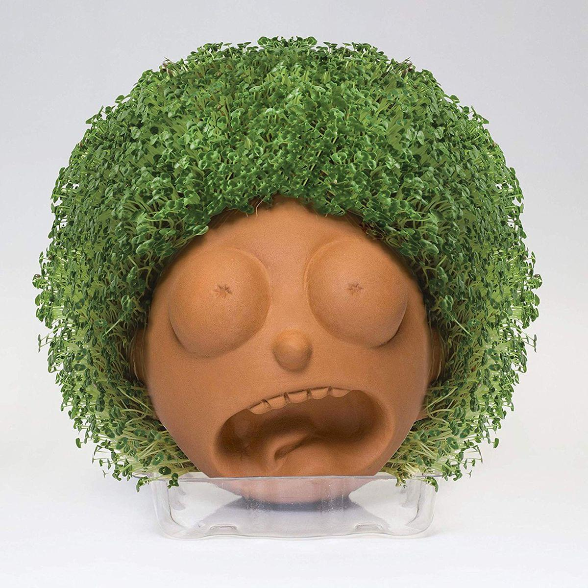 Rick and Morty Chia Pet Morty Decorative Pottery Planter