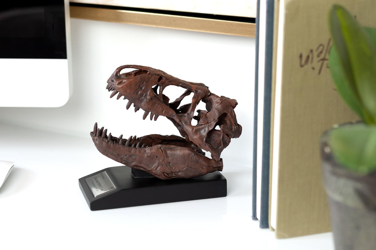 The Nation's T-Rex Skull Statue | 6-Inch Smithsonian Fossil Replica| 1:10 Scale