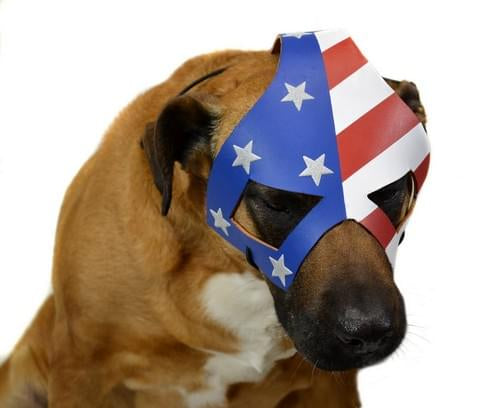 KickAss 2 Eisenhower's Dog Costume Mask