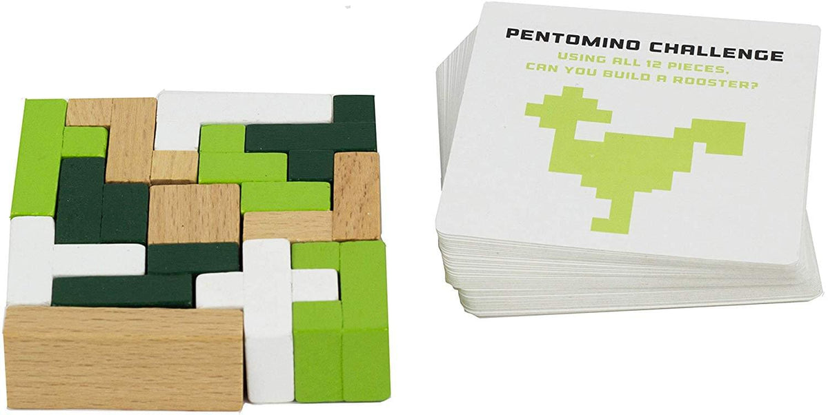 S.T.E.M. Educational Games | Mathematics Pentomino & Puzzle Cards
