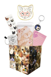 All About Cat's Themed LookSee Mystery Gift Box with 6 Cat Themed Items