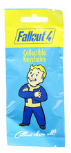 Load image into Gallery viewer, Fallout Looksee Series 3 Mini Box - Fallout 76 Socks, Trading Cards, More!