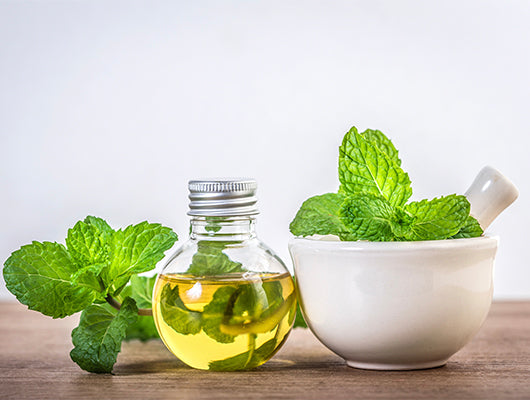 Peppermint Essential Oil For a Healthy Scalp
