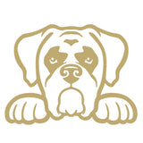 Boxer Dog Peeking V1 Single Color Transfer Type Decal