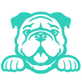 Bulldog Peeking V1 Single Color Transfer Type Decal