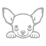Chihuahua Peeking Cute Dog V1 Single Color Transfer Type Decal