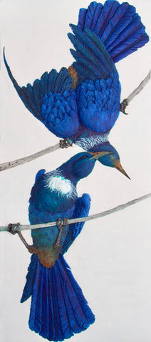 Tui love print by Craig Fletcher