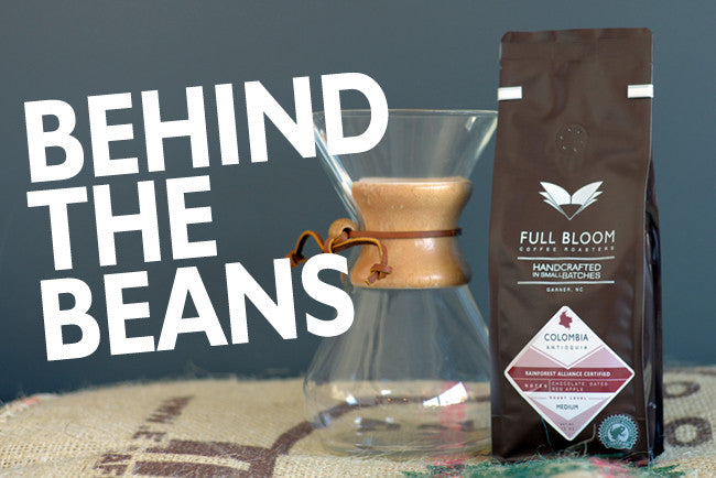 Behind the Beans: Colombia Antioquia