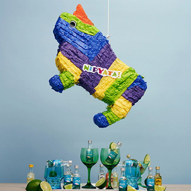 The Adult Booze Piñata: El Toro Loco®! (12 Bottles Pre-loaded)