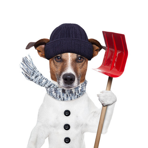 4 Safety Tips For Shoveling Snow