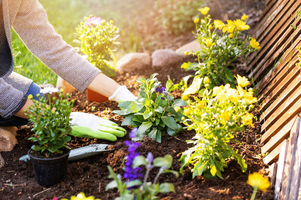 Tips to Stay Injury-Free While Spring Cleaning
