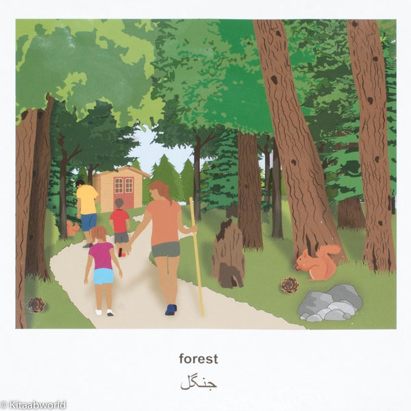 My First Bilingual Book–Outdoors (English–Urdu) - KitaabWorld