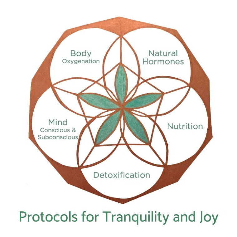 Tranquility And Joy Protocol (Physical Version)