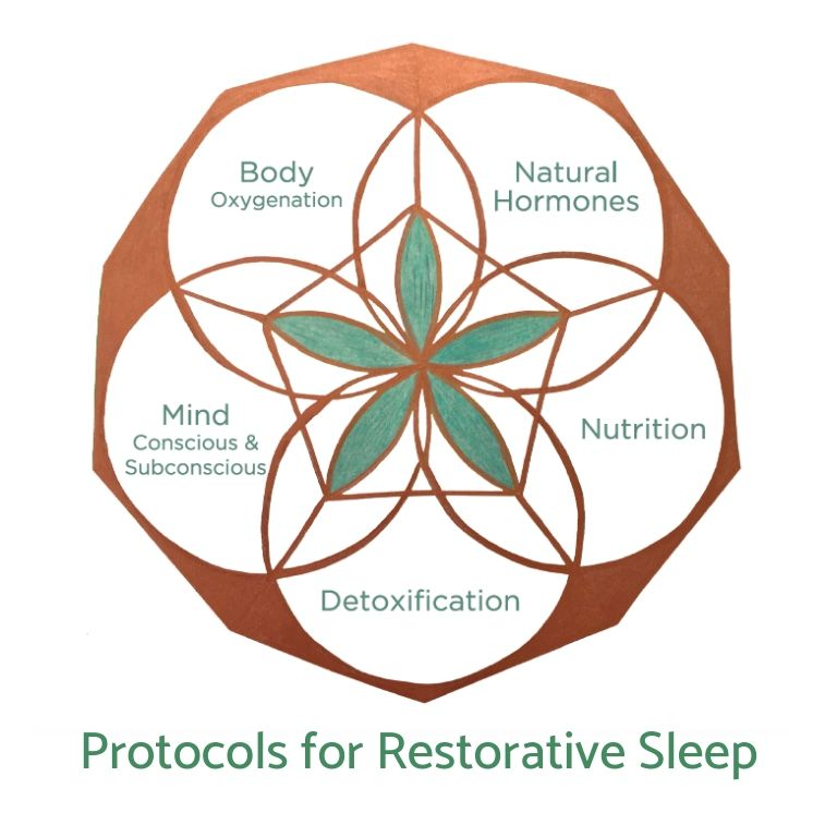 Sleep Protocol (Digital Version)