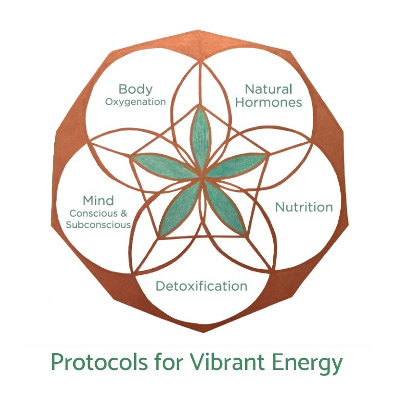 Energy Protocol (Physical Version)
