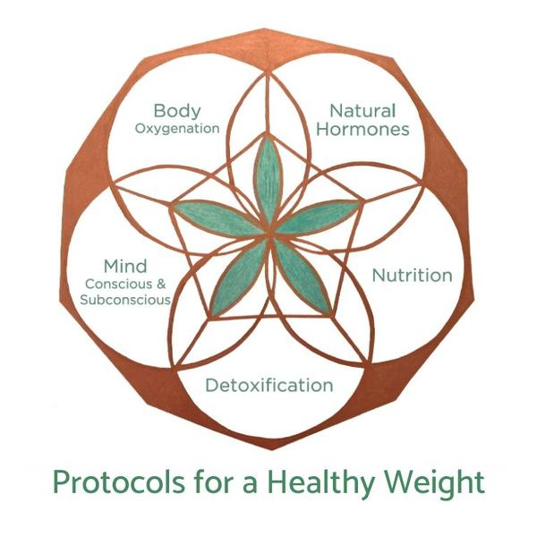 Healthy Weight Protocol (Digital Version)