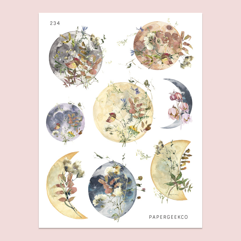 Autumn Moon Floral Stickers 234 - PapergeekCo