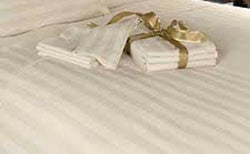 T250 Import Bone Stripe Fitted Sheets