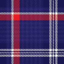 Perfect Plaid Napkins