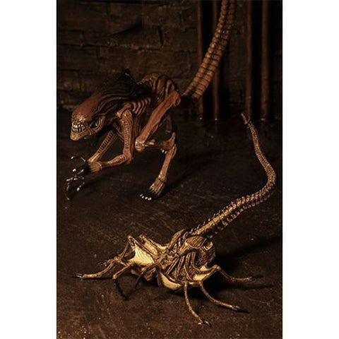 Alien 3 Creature Accessory Pack - Ferrara Market Inc.