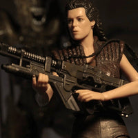 Alien Series 14 Action Figure Set - Ferrara Market Inc.