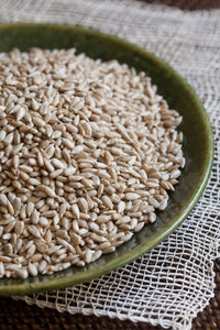 Raw Sunflower Seeds - Sprout Planet