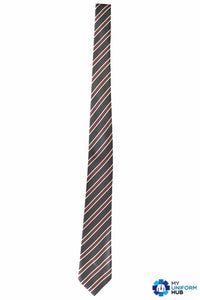 "45"" Tie for Nishkam Primary"