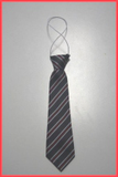 Elastic Tie for Nishkam Primary