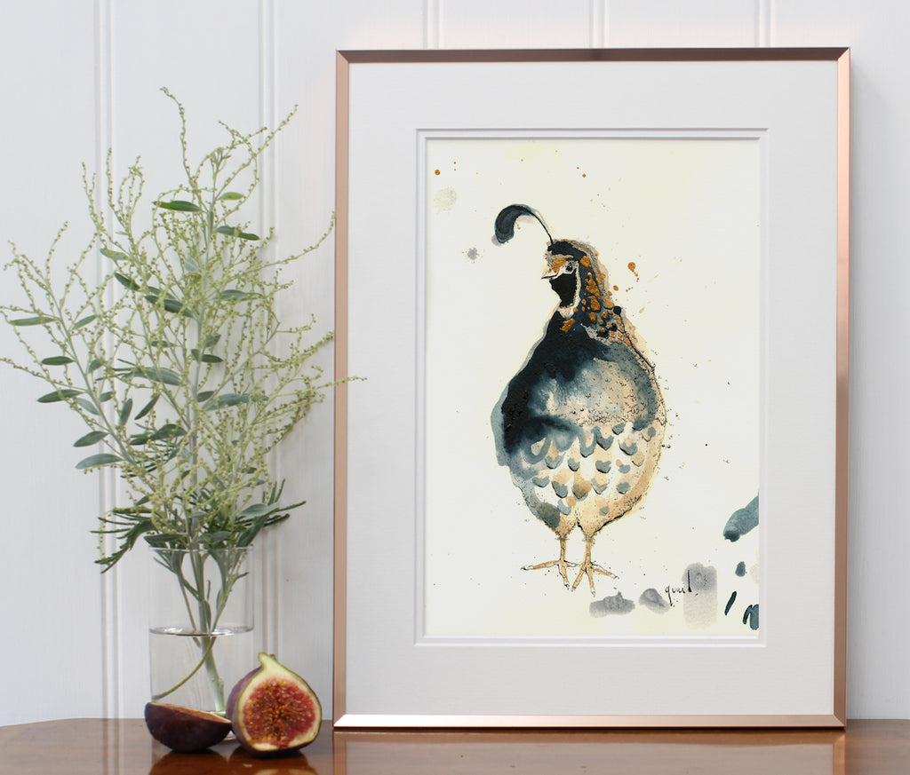 quail print from anna wright illustration