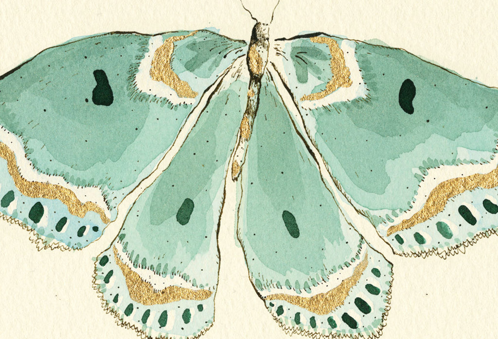 turquoise butterfly print from anna wright illustration