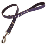 Indigo Leather Dog Lead
