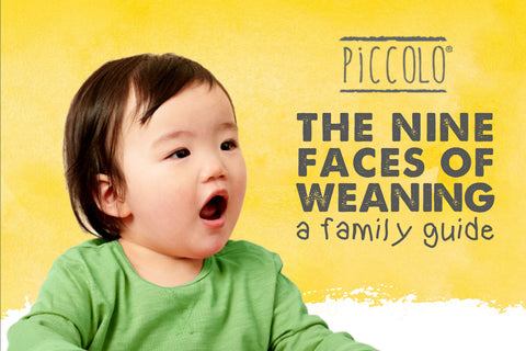 The Nine Faces of Weaning, Piccolo's Family Guide