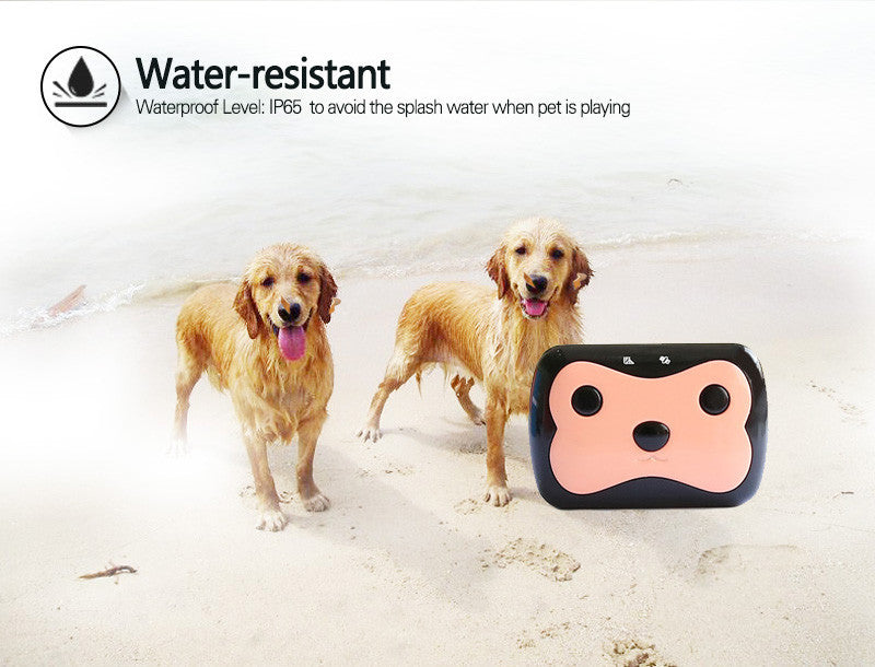 PET Tracker, Dual Tracking GPS+LBS , iP65 waterproof , e-Fence, remote call and voice monitor