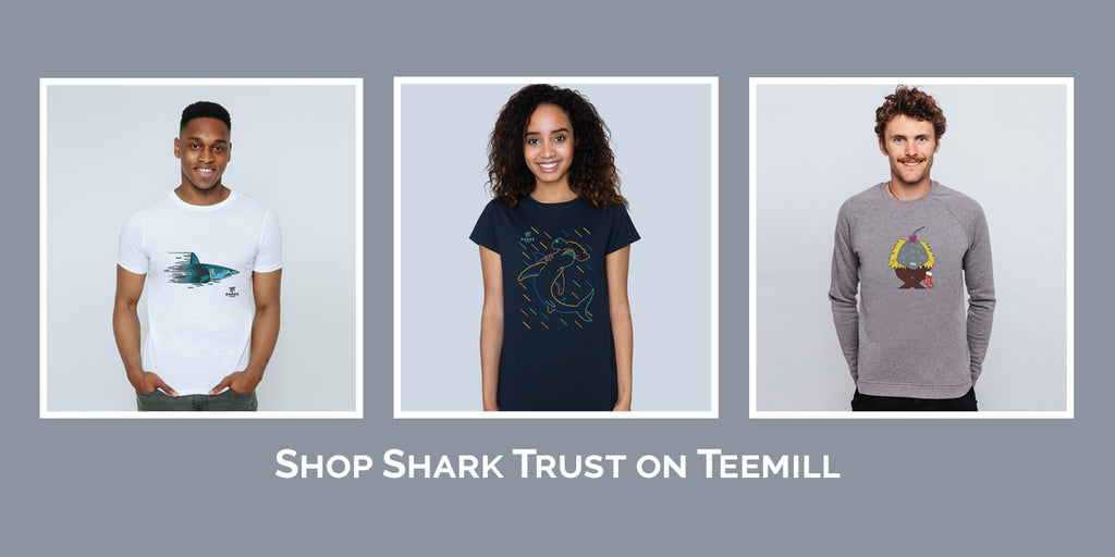 Shop Shark Trust Teemill