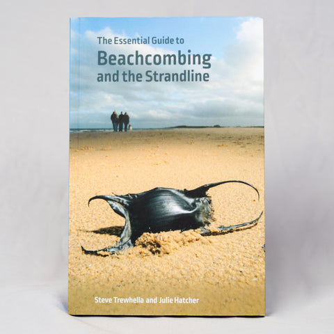 The Essential Guide to Beachcombing