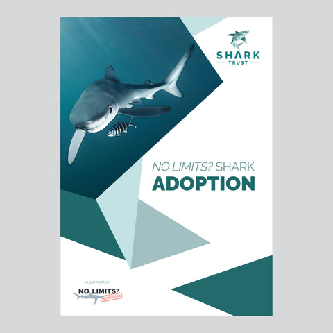 No Limits? Sharks Adoption