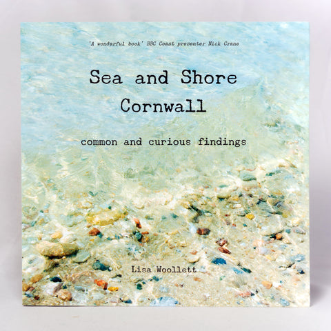 Sea & Shore Cornwall: Common & Curious Findings
