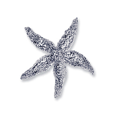 Starfish Beach Treasure