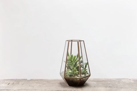 Hexagonal Brass Terrarium