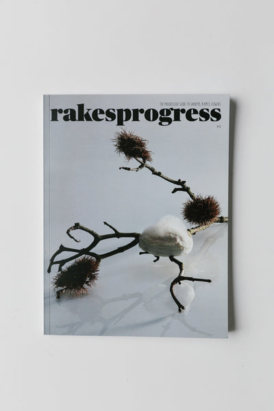 Rakesprogress Magazine