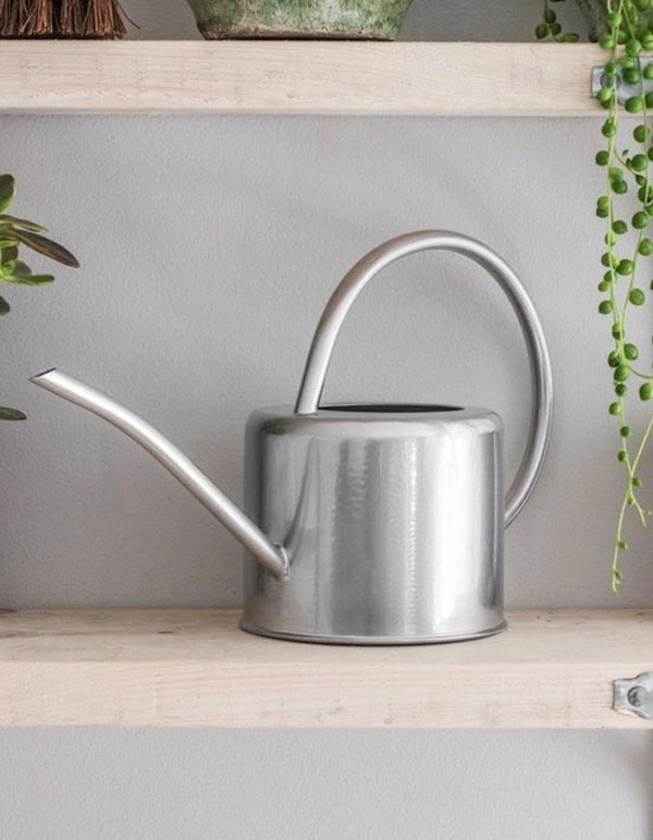 Metallic Silver Indoor Watering Can - Pre Order SEPTEMBER