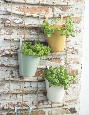 Colourful Hanging Balcony Pots PRE ORDER JUNE