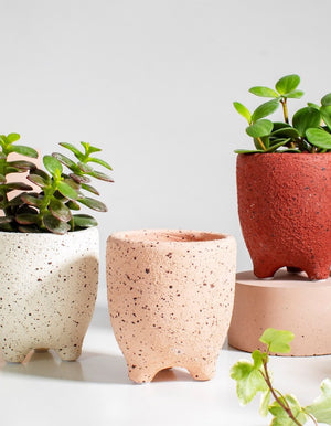Mini Speckled Plant Pots