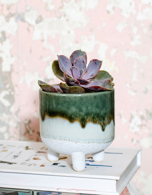 Green Ombre Mini Stoneware Planter