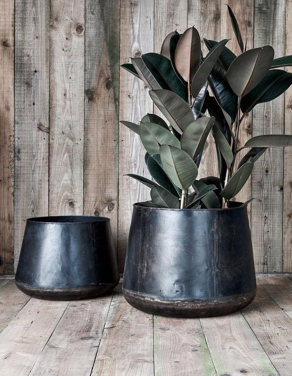 Recycled Iron Planters